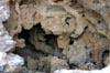 Limestone Hole [ EF 17-40mm 1:4 L ]