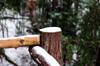 Snow on Post [ EF 50mm 1.8 ]