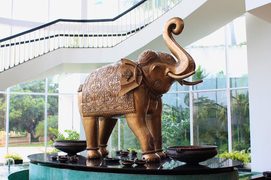 Elephant [ EF 28mm 1.8 ]