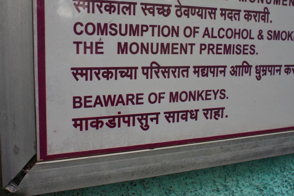 Beaware - Monkey [ EF 28mm 1.8 ]