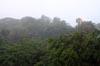 Rain [ EF 28mm 1.8 ]