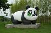 Pandas! [ EF 28mm 1.8 ]