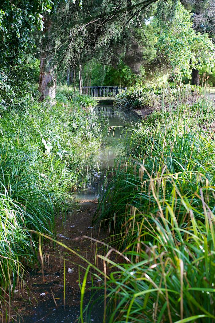 Waterway [ Zeiss Planar T* 50mm 1.4 ZE ]
