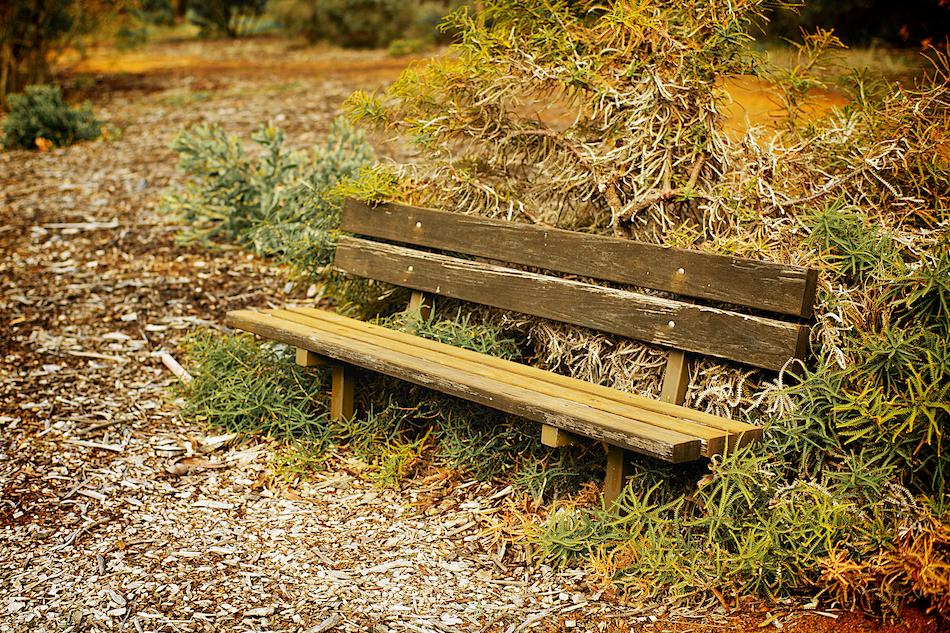 Rest Spot [ Zeiss Planar T* 50mm 1.4 ZE ]