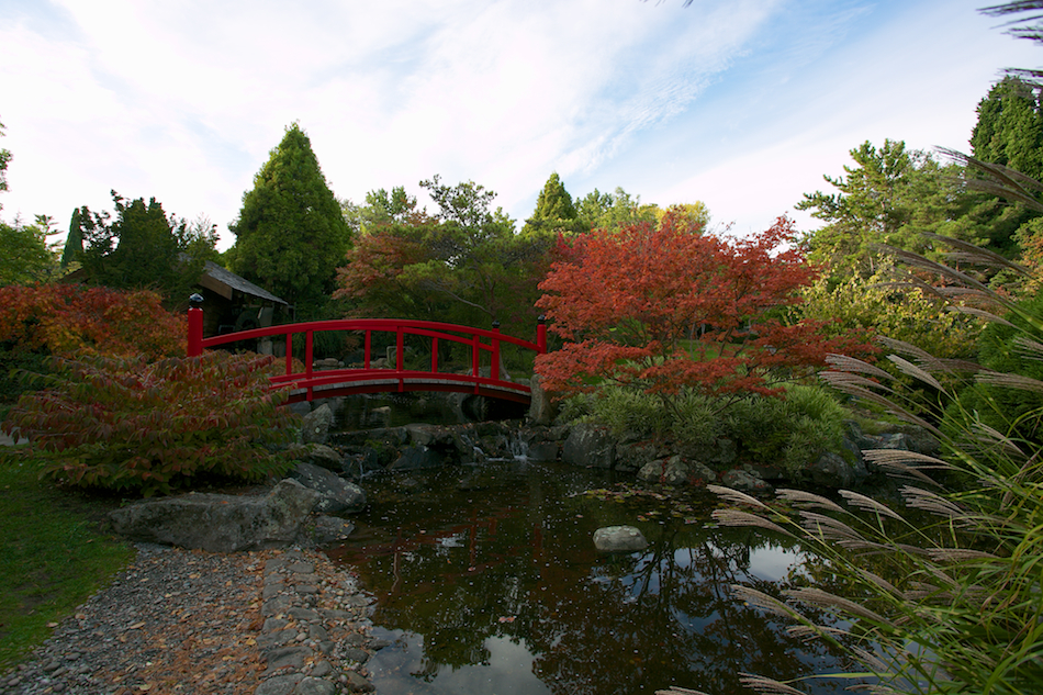 Japanese Garden Bridge [ EF 17-40mm 1:4 L ]