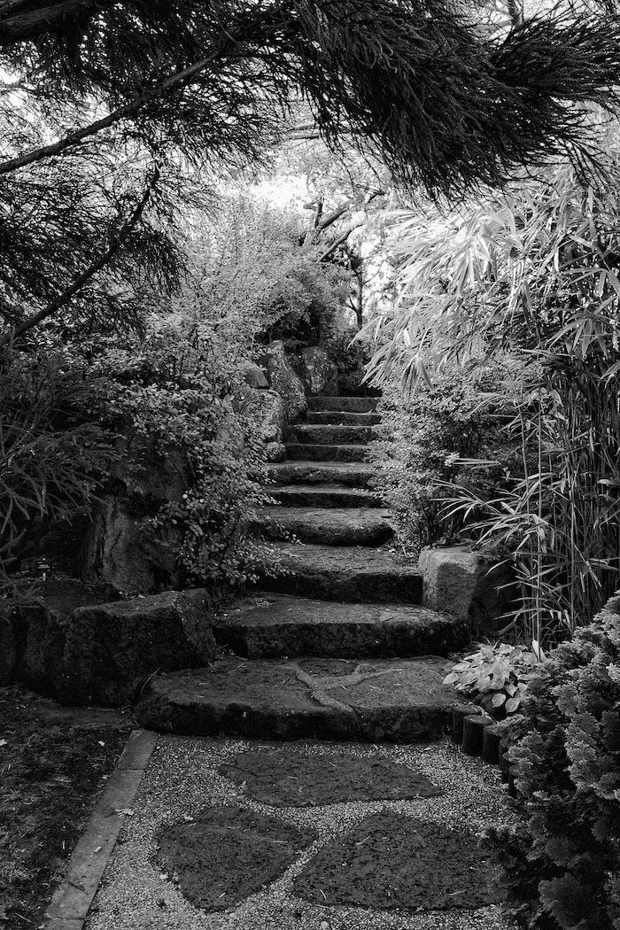 Steps [ EF 17-40mm 1:4 L ]