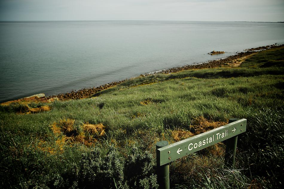 Coastal Trail [ EF 24-105mm 1:4 L IS ]