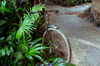 Wet Bicycle [ Zeiss Planar T* 50mm 1.4 ZE ]