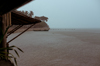 Downpour [ Zeiss Planar T* 50mm 1.4 ZE ]
