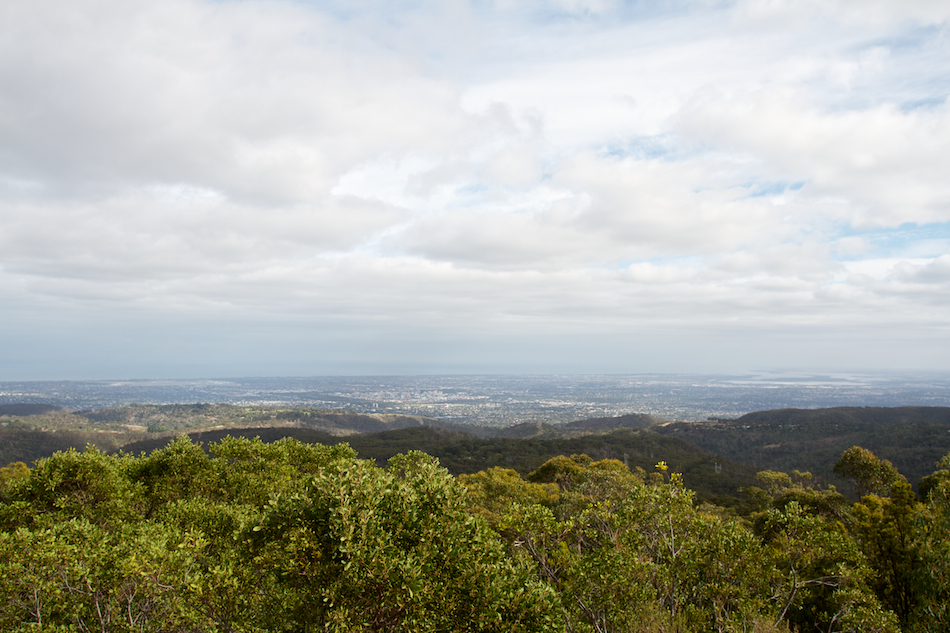 Adelaide from Mt Lofty [ EF 17-40mm 1:4 L ]
