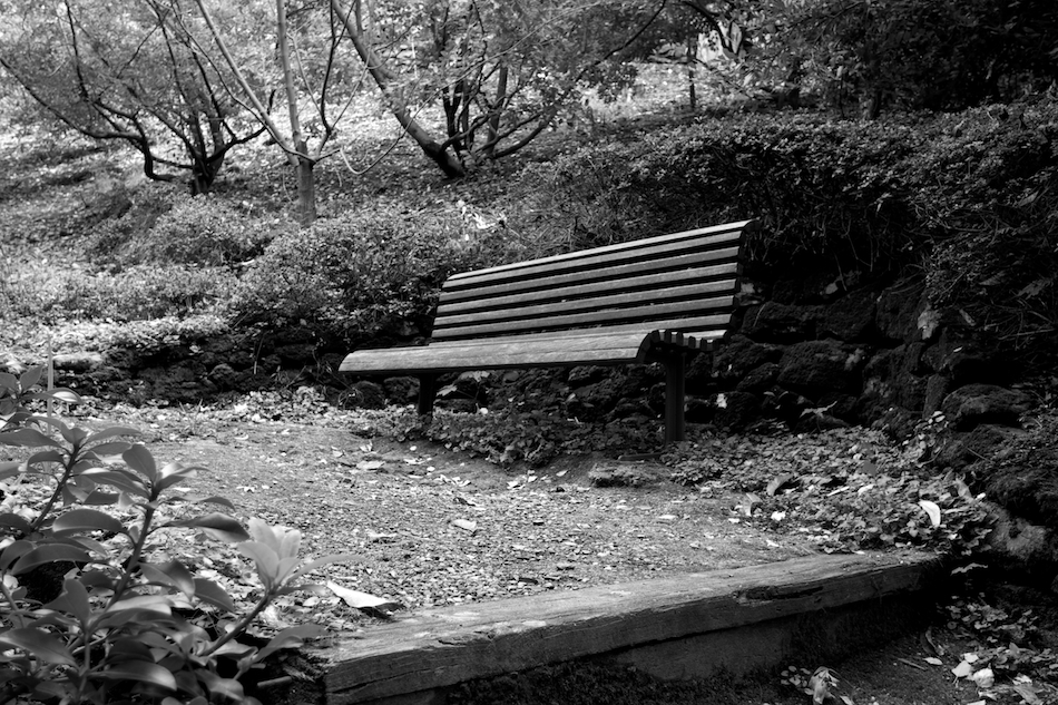 Vacant Bench [ EF 17-40mm 1:4 L ]