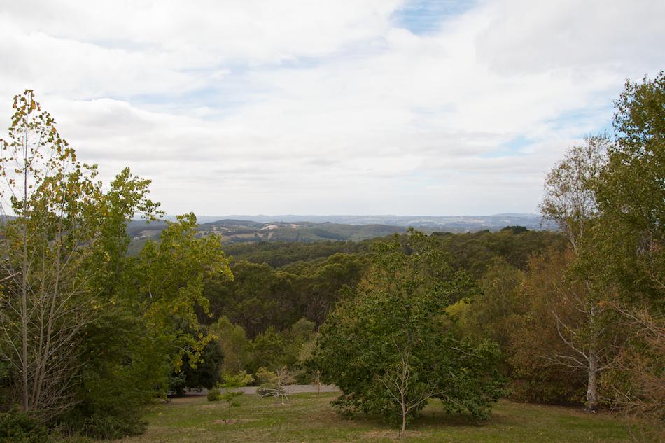 Gardens View [ EF 17-40mm 1:4 L ]