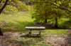 Picnic Table [ EF 17-40mm 1:4 L ]