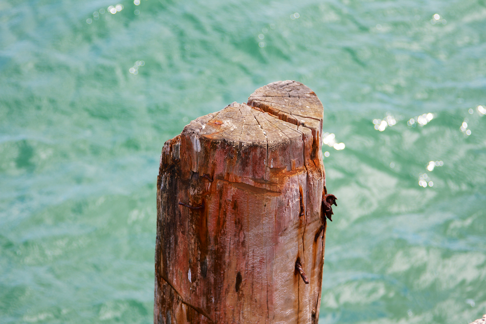 Post, Used [ EF 24 - 105mm 1:4 L IS ]
