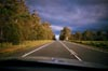 Tasmanian Road