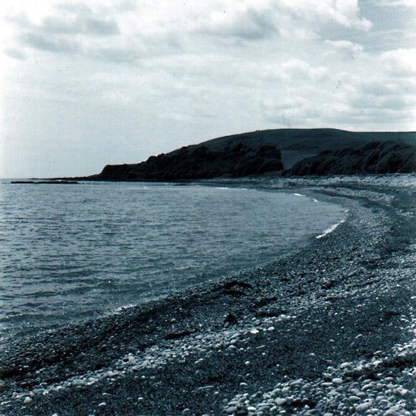 Lillico Shore