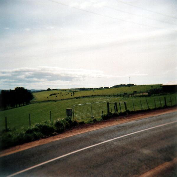 Table Cape Field