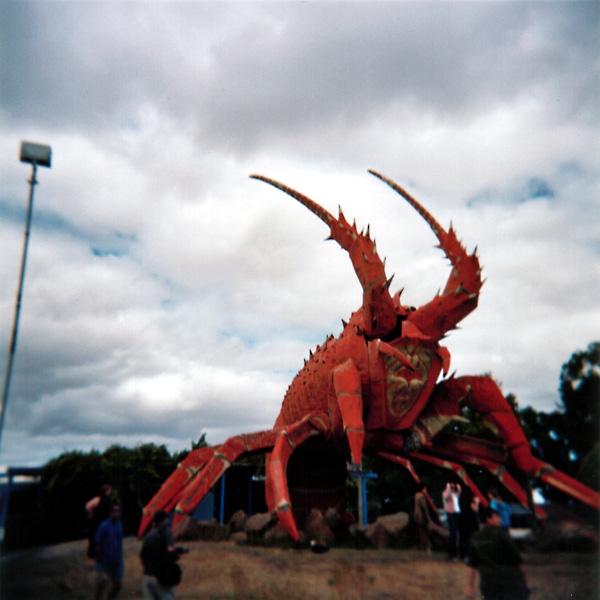 Big Crayfish - Kingston